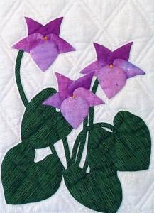 flowers-1-31